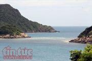 Côn Đảo - Nơi bảo vệ nhiều rùa biển nhất Việt Nam