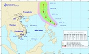 Áp thấp mạnh lên thành bão Danas, vùng biển Bình Thuận - Kiên Giang mưa lớn