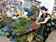 Mưa lớn kéo dài, giá rau xanh miền Trung tăng chóng mặt