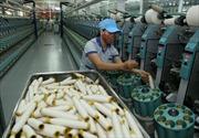 Dệt may Việt Nam tăng trưởng 2 con số, nhiều nước tăng trưởng âm