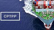 Quy định sở hữu trí tuệ và rác thải công nghệ lần đầu quy định trong CPTPP