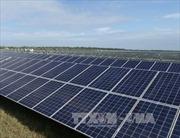 Trung Quốc khiếu nại thuế pin năng lượng Mặt Trời của Mỹ lên WTO