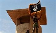 Bị quân đội Syria tấn công dồn dập, IS quay sang đánh du kích