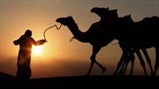17 nước Arab tham gia 'Vành đai, Con đường' của Trung Quốc