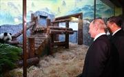 Tổng thống Putin ngắm gấu trúc cùng Chủ tịch Tập Cận Bình