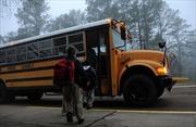 Kinh nghiệm của các nước để tránh bỏ quên học sinh trên xe buýt