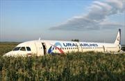Toàn cảnh hiện trường vụ hạ cánh khẩn của máy bay Nga trên ruộng ngô