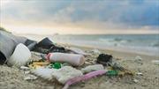 Chile làm giàu từ rác thải nhựa