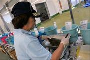 Nhật Bản cân nhắc phục vụ thực phẩm từ Fukushima cho Olympics 2020