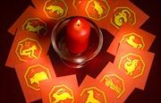 Thầy đồng nổi tiếng Hong Kong nhận định về các con giáp trong năm Canh Tý