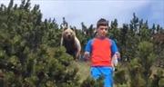 Cậu bé bình tĩnh kỳ lạ khi gấu nâu to lớn bám sát trên núi