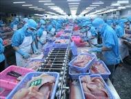 Doanh nghiệp Việt Nam ngày càng quan tâm tới thị trường châu Phi