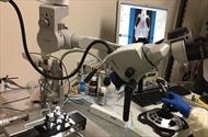Phát hiện nguyên nhân thoái hóa thần kinh nhờ kính hiển vi quang học