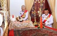 Nghi vấn Hoàng gia Thái Lan dùng mèo nhồi bông trong Lễ đăng cơ của Nhà Vua