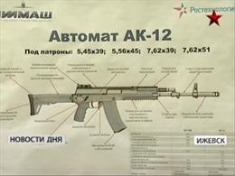 Quân đội Nga loại bỏ 4 triệu khẩu súng