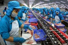 Tăng trưởng kinh tế 2012 có khả năng chỉ đạt 5,1%