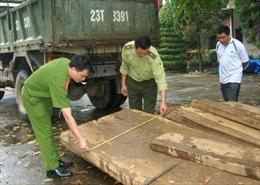 Bắt giữ xe tải chở gỗ quý hiếm