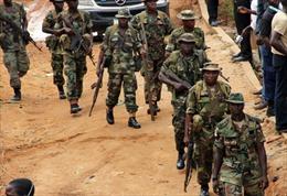 Tấn công vũ trang tại Nigeria và Kenya