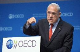 OECD: Tăng trưởng toàn cầu giảm mạnh trong 2013