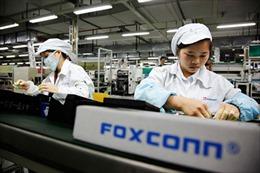 Foxconn sản xuất smartphone cho Amazon và Microsoft