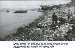 Nguồn thải lục địa làm tăng ô nhiễm ven bờ