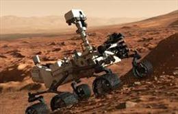 Chụp được ảnh 'hoa' trên Sao Hỏa?