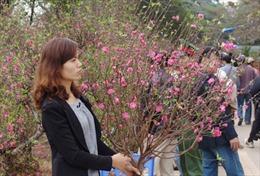 Đi chợ hoa Hà Nội ngày cận Tết