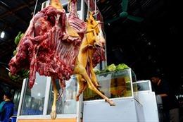 Thịt động vật tràn ngập lối lên chùa Hương