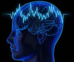 Phát hiện 'vùng ma quỷ' trong não người