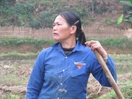 Tan hoang quê nghèo vì khoáng sản - Bài 2: Ruộng đồng kêu cứu