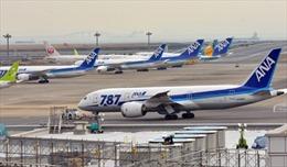 Bay thử 787 Dreamliner trước khi đưa trở lại đường băng