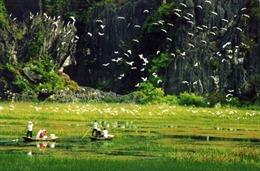 Chen chân du lịch Ninh  Bình