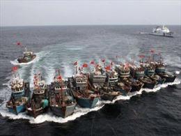 Trung Quốc điều tra cáo buộc Triều Tiên bắt cóc tàu cá