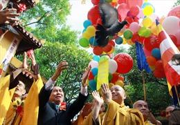 Long trọng Đại lễ Phật đản tại chùa Quán Sứ