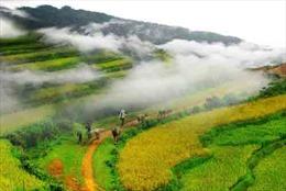 Các địa phương rục rịch đón khách, phục hồi du lịch nội địa