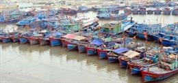 Khai thác bền vững lợi thế biển đảo Nghi Sơn - Bài 2: Hình thành chuỗi sản xuất, chế biến và tiêu thụ hải sản