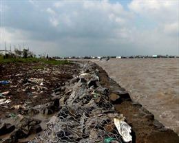 Gần 60 tỷ đồng xây kè hộ đê khẩn cấp tại Cà Mau