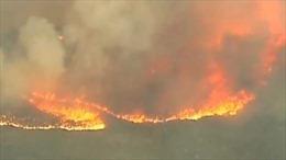 Chữa cháy rừng, 19 lính cứu hoả Mỹ thiệt mạng