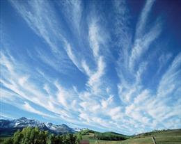 Sự sống trên Trái Đất sẽ biến mất vì thiếu... CO2