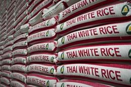 Gạo Thái Lan đóng gói bị yêu cầu điều tra