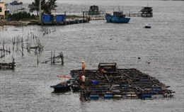 Tin bão trên Biển Đông (cơn bão số 9)