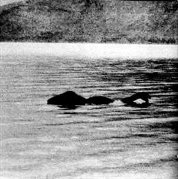 """Những con """"thủy quái"""" lừng danh thế giới - Kỳ 2: Quái vật hồ Thiên Trì"""