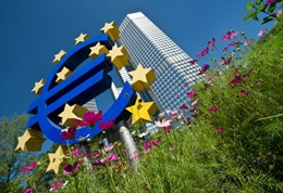 ECB cam kết nâng cao tính thanh khoản nền kinh tế