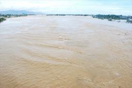 Lũ trên các sông ở Quãng Ngãi và Bình Định lên chậm