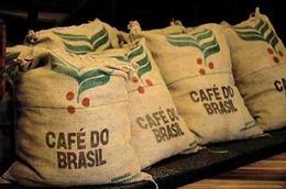 Xuất khẩu cà phê của Brazil tăng mạnh