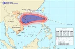 Tin mới cập nhật về bão Krosa