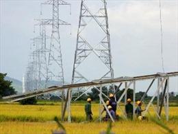Cắt điện 2 mạch đường dây 500 kV Bắc - Nam