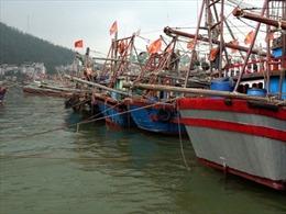 Thanh Hóa: Vẫn còn 140 phương tiện chưa vào bờ