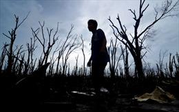 Cần hỗ trợ tâm lý nạn nhân sau bão Haiyan ở Philippines