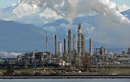 Mỹ Latinh ngày càng phụ thuộc vào nhiên liệu của Mỹ